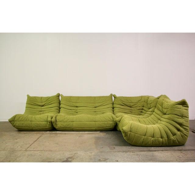 Modern Ligne Roset Togo Sofa For Sale - Image 13 of 13