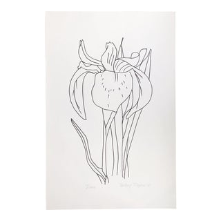 """Original Vintage 1978 Black and White Botanical """"Iris"""" Drawing Unframed on Paper Signed Betsey Tryon For Sale"""