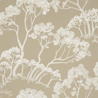 Sample - Schumacher Timber! Wallpaper in Natural For Sale