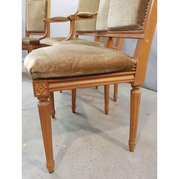 1950s Set of Five French Louis XVI Square Back Vintage Dining Chairs 4 Side Chairs and 1 Armchair For Sale - Image 5 of 13