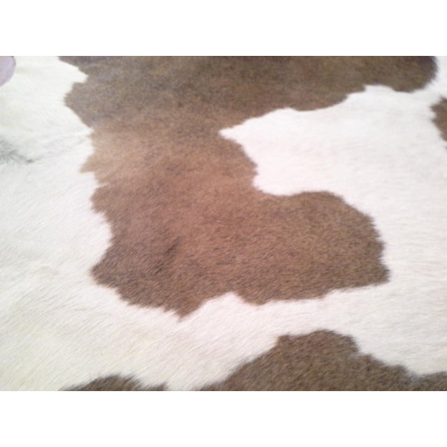 Authentic Cow Hide Rug - 5′11″ × 6′11″ For Sale In Tampa - Image 6 of 7