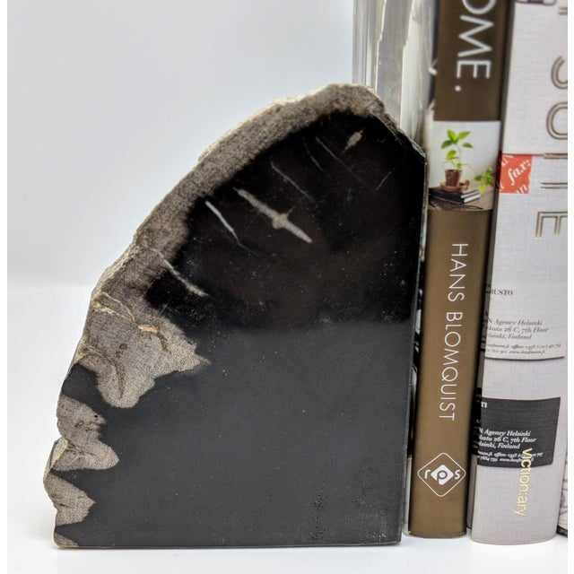 Pair of Petrified Wood Bookends - Image 5 of 13