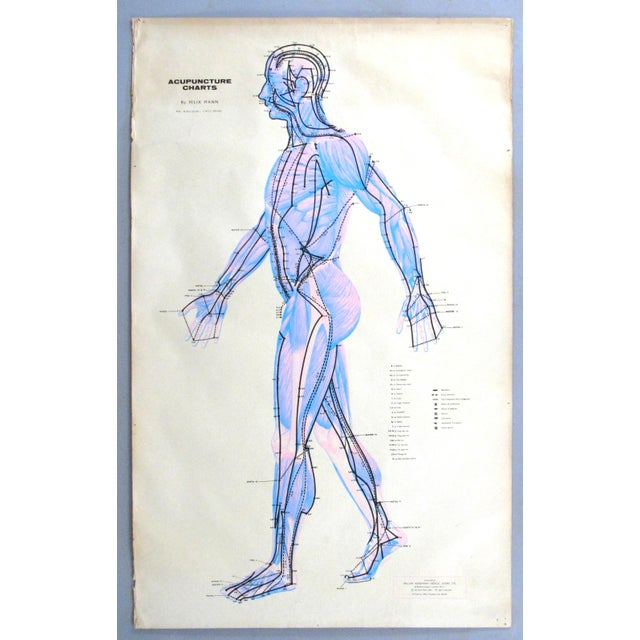 Vintage Acupuncture Serigraphs on Linen by Felix Mann - Set of 3 For Sale - Image 4 of 12