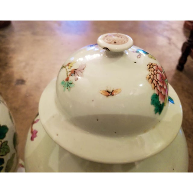 Qing Dynasty Lidded Ginger Jars - a Pair For Sale In Dallas - Image 6 of 13