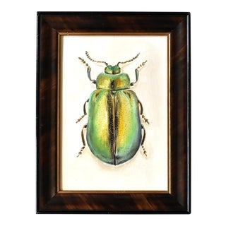 Contemporary Oil Painting of a Beetle For Sale