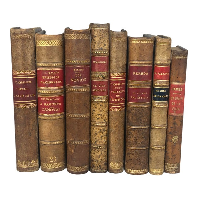 Antique Leather Bound Spanish Books - Set of 8 For Sale