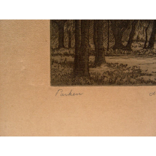English Traditional 1926 Forest Etching For Sale - Image 3 of 3