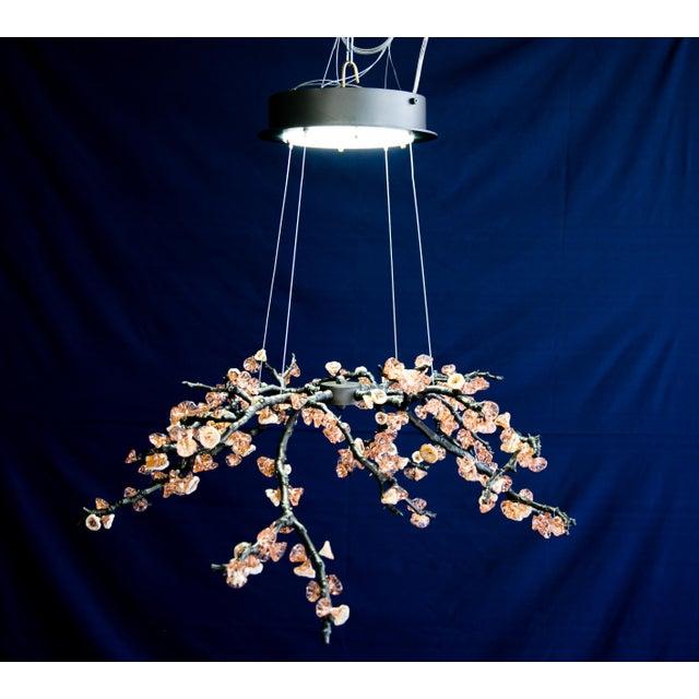 21th sculpture handmade chandelier almond three pendant lamp in cast 21th sculpture handmade chandelier almond three pendant lamp in cast brass glass image 5 aloadofball Images