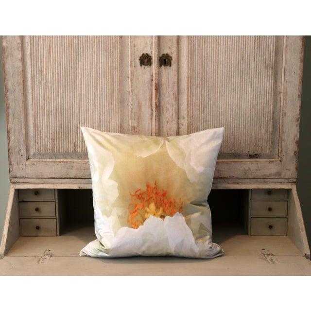 White Tree Peony Bloom in Rodin Museum Garden Paris Photo Pillow For Sale - Image 11 of 13