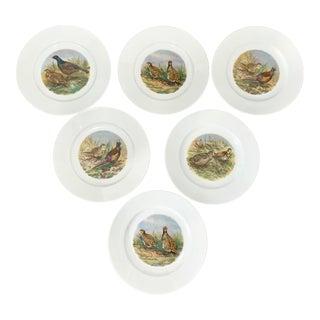 Vintage Wildlife Pheasant Porcelain Salad Plates by Heinrich Germany - Set of 6 For Sale