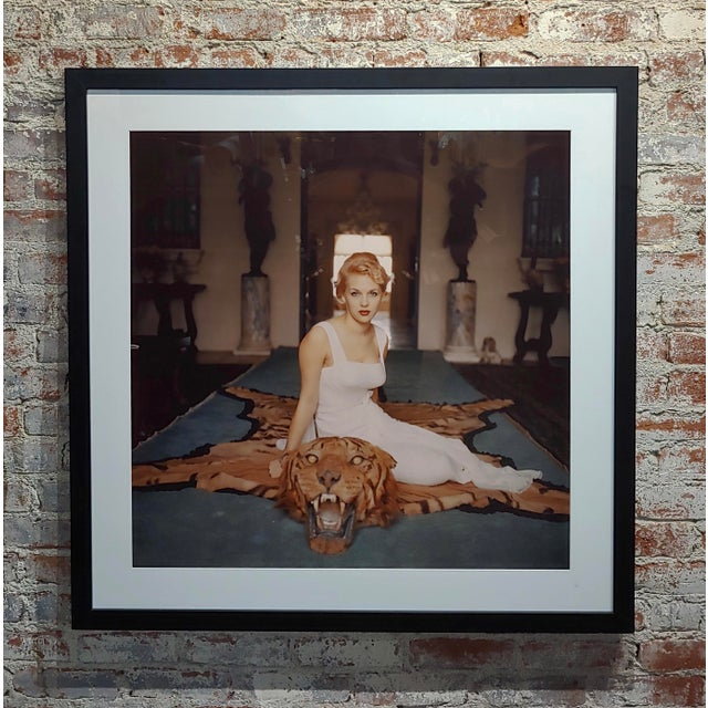 Slim Aarons -Beautiful Lady Daphne Cameron on a Tiger Skin Rug - 1959 Photograph 'Beauty And The Beast' 1959, Lady Daphne...