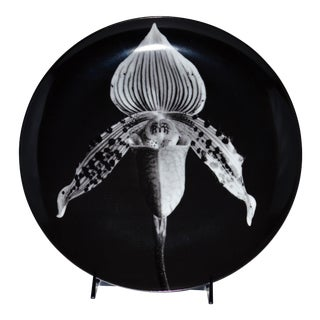 Swid Powell Robert Mapplethorpe Orchid Plate For Sale