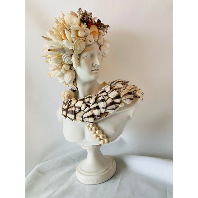 Stone Shell-Encrusted Apollo Bust For Sale - Image 7 of 7