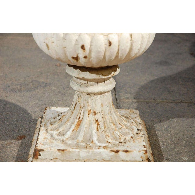 Iron Pair of Painted 19th Century English Cast Iron Urns With Fluted Bodies For Sale - Image 7 of 8