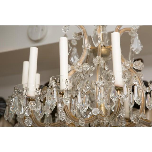 Vintage Maria Theresa Twelve-Light Chandelier For Sale - Image 10 of 11