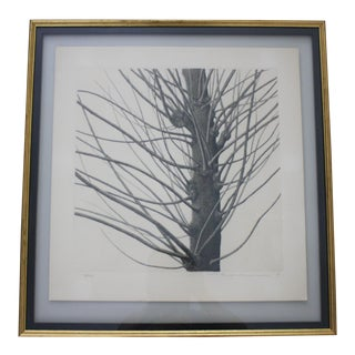 Framed Etching of Tree by Listed Artist Tanaka Ryohei (B. 1933)