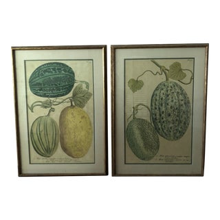 Vintage Gold Framed Melon Prints - A Pair For Sale