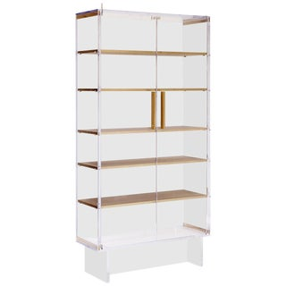 Custom Tall Lucite Cabinet With Brass Shelves For Sale