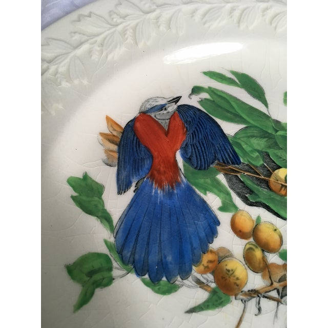 Florida Jay Adams England Transferware Ceramic Plate - Image 3 of 11