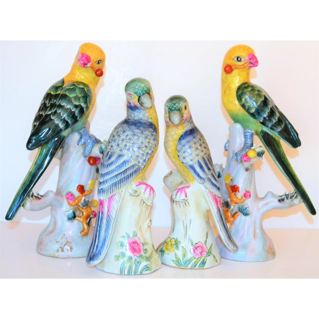 (Final Mark Down Taken) Chinese Export Porcelain Parrot Figurines - Set of 4 For Sale - Image 4 of 12