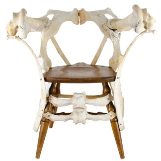 Sculptural Bone Chair For Sale