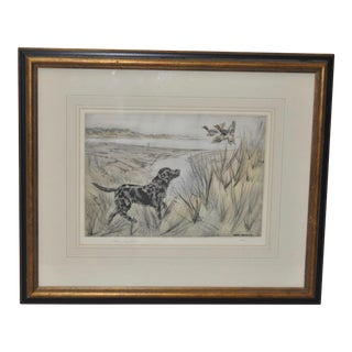 Henry Wilkinson Sporting Dog Etching with Aquatint For Sale