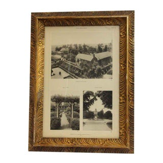 Morgan Estate Photo With Floral Frame For Sale