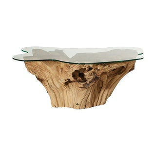 Weathered Teak Root Glass Top Coffee Table For Sale