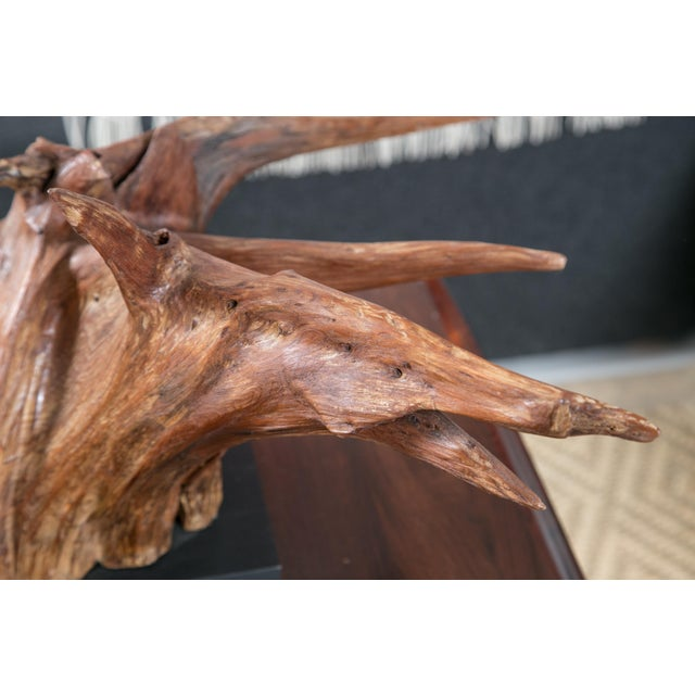 Mounted Driftwood Sculpture - Image 6 of 7