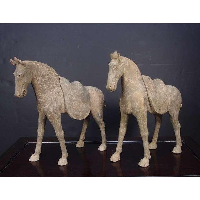 Asian Pair Early Tang Dynasty Grey Pottery Striding Horses with Removable Saddles For Sale - Image 3 of 8