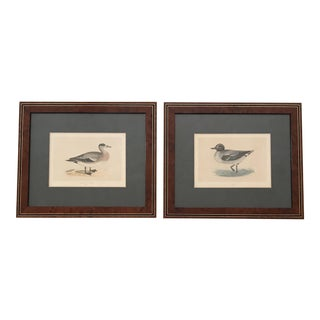 Custom Framed Antique Fowl Prints - a Pair For Sale
