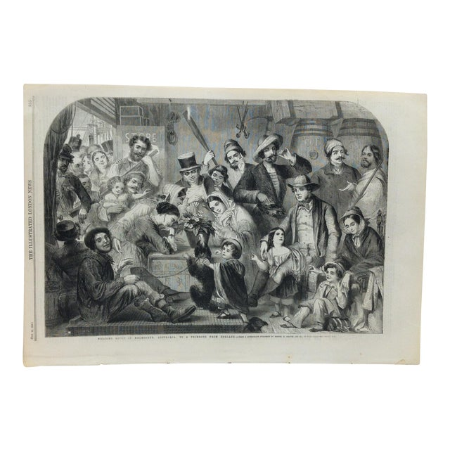 """1858 Antique Illustrated London News """"Welcome Given in Melbourne Australia to a Primrose From England"""" Print For Sale"""