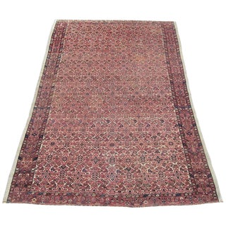Antique Persian Senneh Rug - 4′3″ × 6′2″ For Sale