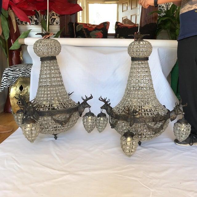 Bronze 10 Light Deer Head Chandelier For Sale - Image 10 of 11