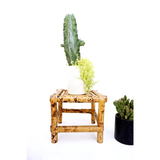 Vintage Tortoise Bamboo Plant Stand For Sale - Image 5 of 11