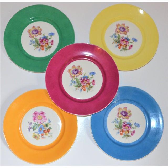 Ceramic Vintage Richard Ginori Italian Botanical Porcelain Plates - Set of 5 For Sale - Image 7 of 12