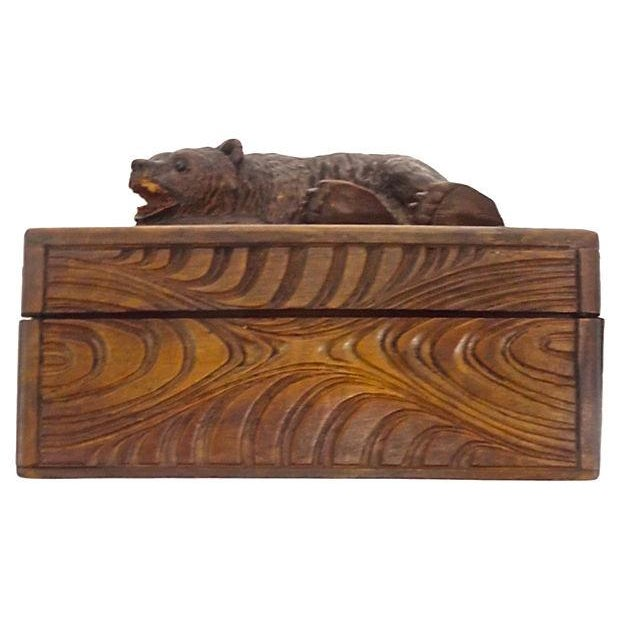 Antique Black Forest Carved Bear Box - Image 5 of 5