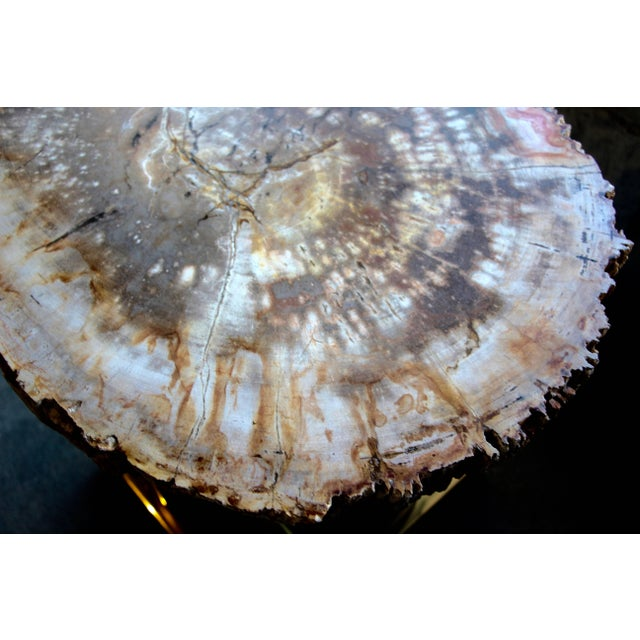 A spectacular petrified wood tabletop that we have set on a pretty brass and chrome base. The top is not attached but is...