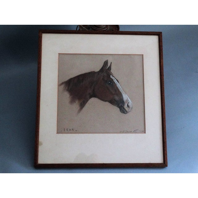Equestrian Race Horse Portrait Drawing - Image 2 of 8