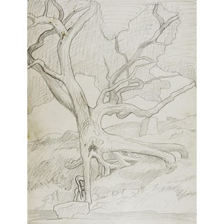 1950's Drawing Tree & Forest Stream 2 in 1 For Sale
