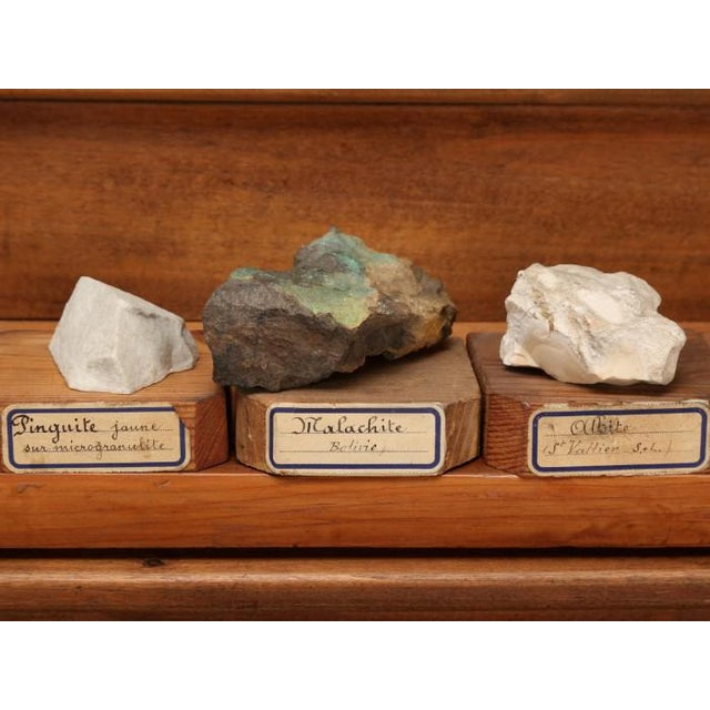 Boho Chic 1891 French School Mineral Specimen Collection - 200 Pc. Set For Sale - Image 3 of 13