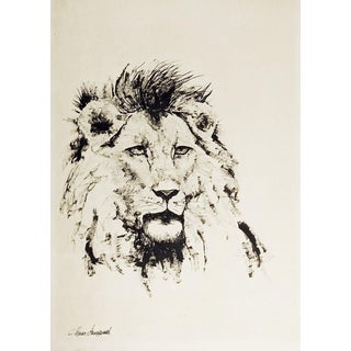 Lion Pen & Ink Drawing For Sale