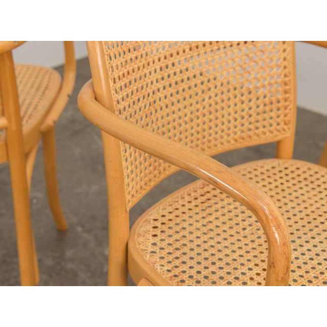 Canary Yellow Joseph Hoffman Bentwood Chairs - Set of 8 For Sale - Image 8 of 11