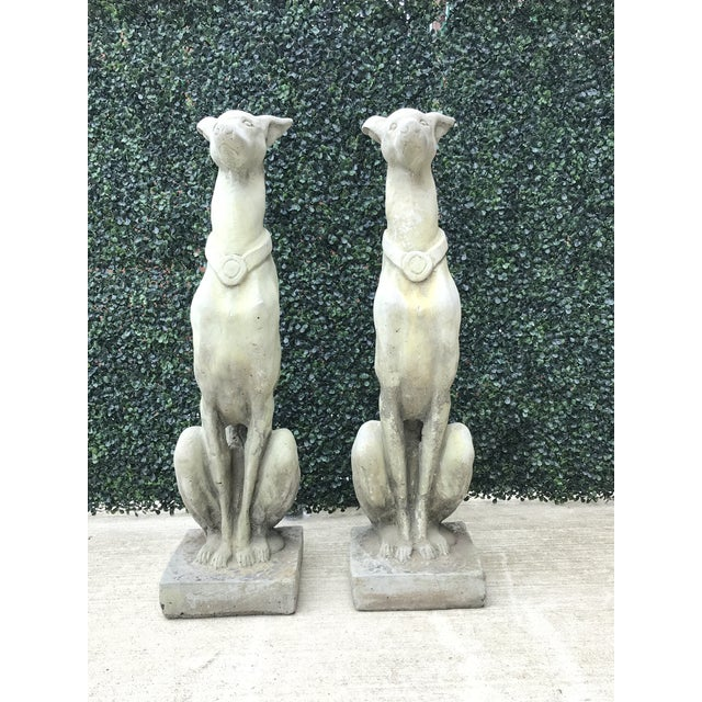 Whippet Dog Statues- a Pair For Sale In New York - Image 6 of 12