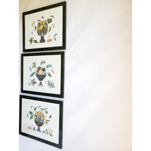 French Provincial Decorative Butterfly Botanical Framed Prints-Set of 3 For Sale - Image 3 of 12