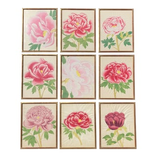 Vintage Peony Watercolors, Set of 9 For Sale