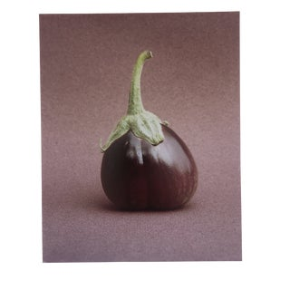 Eggplant Still lIfe Photograph by Garo For Sale