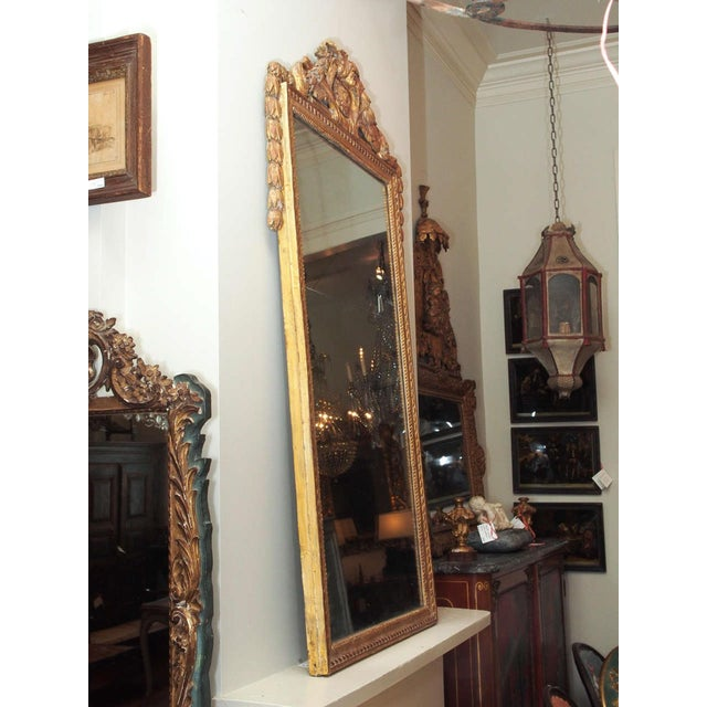 Finely Carved Louis XVI Style Mirror - Image 8 of 8