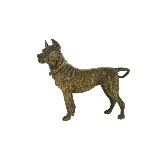 Traditional Original Bronze Pit Bull Sculpture For Sale - Image 3 of 9