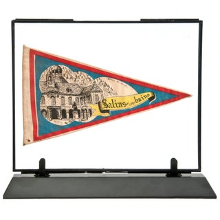 Framed Vintage French Salins Les Bains Pennant For Sale